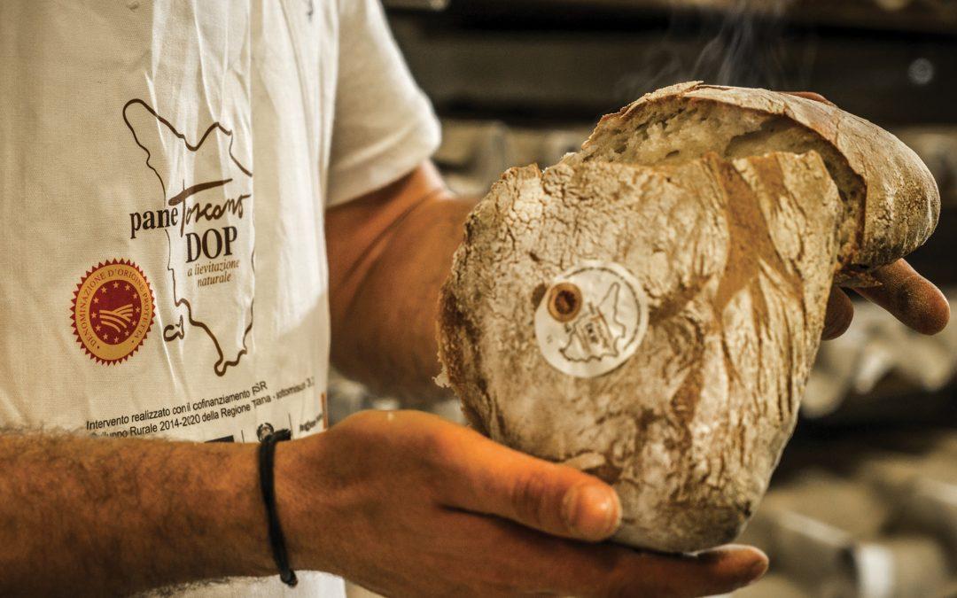 Sapori & Saperi made in Tuscany